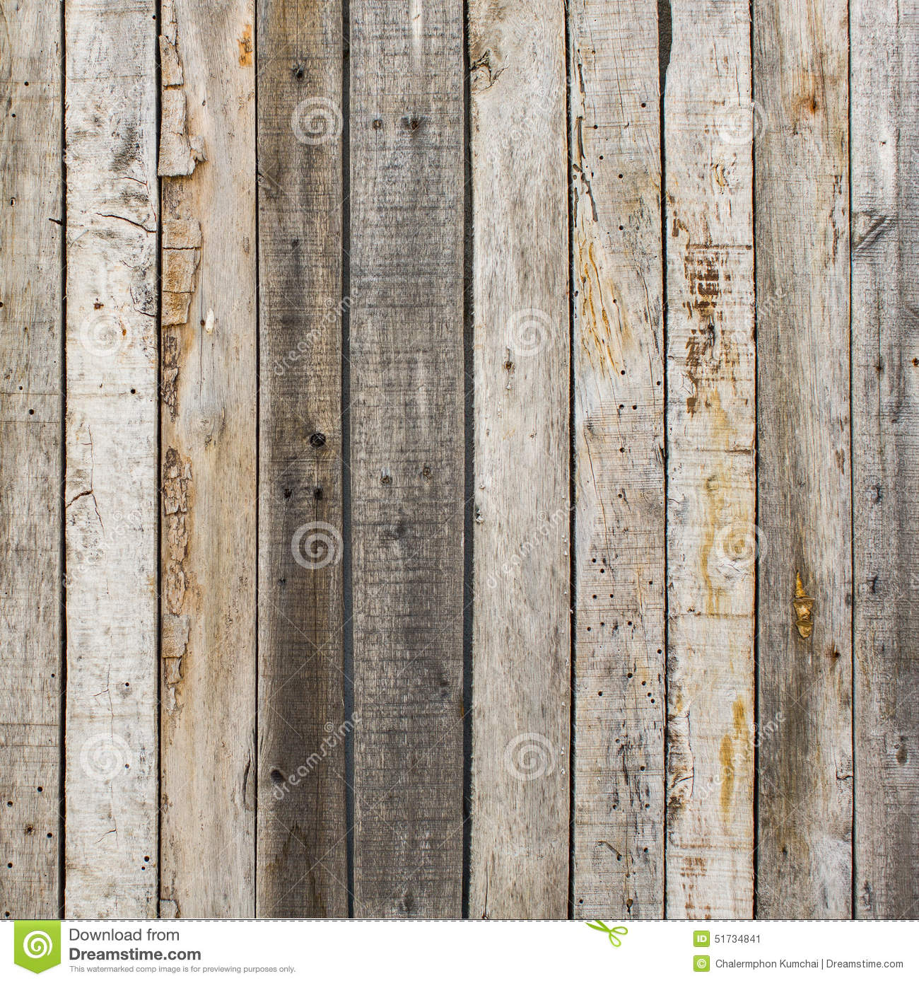 Rustic Weathered Barn Wood Background With Knots And Nail
