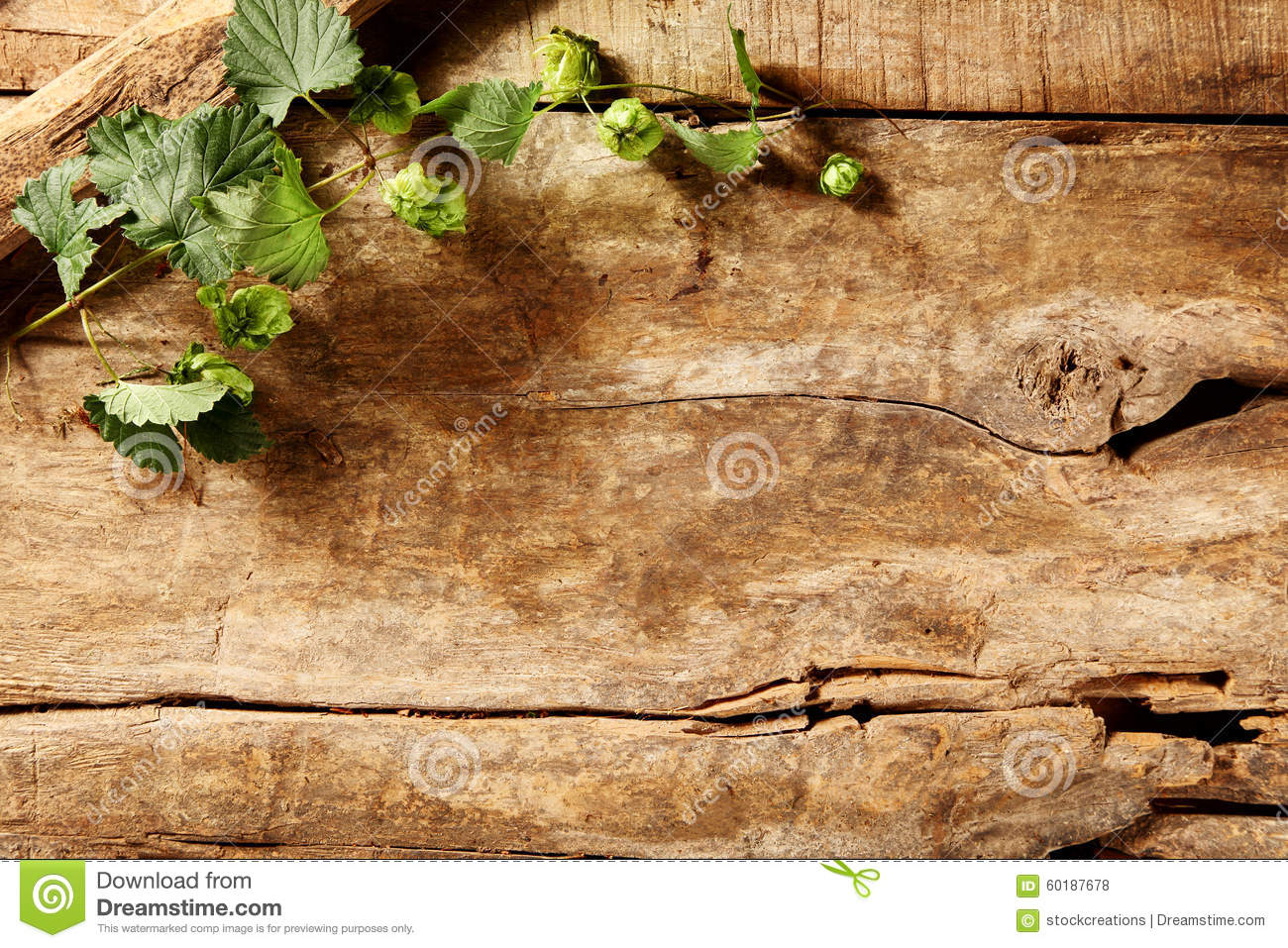 Rustic Weathered Wood Background With Greenery Stock Photo