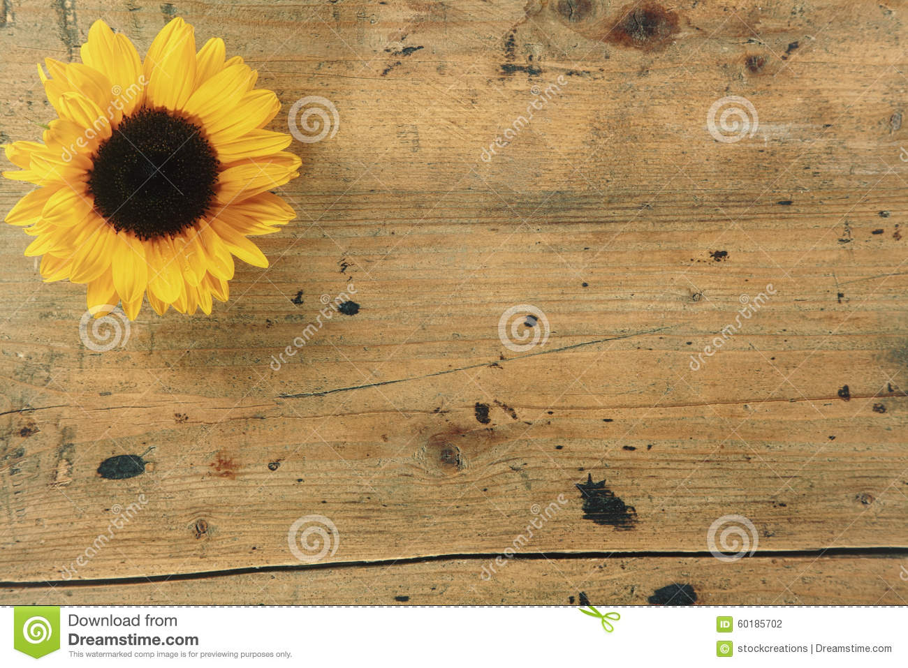Rustic Wooden Background With Sunflower