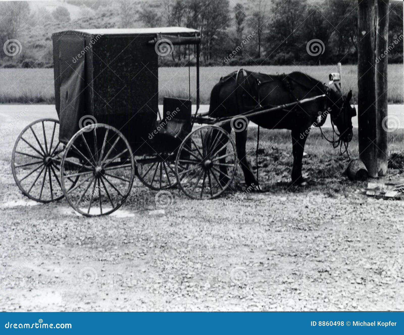 Rustiek Paard en Vervoer