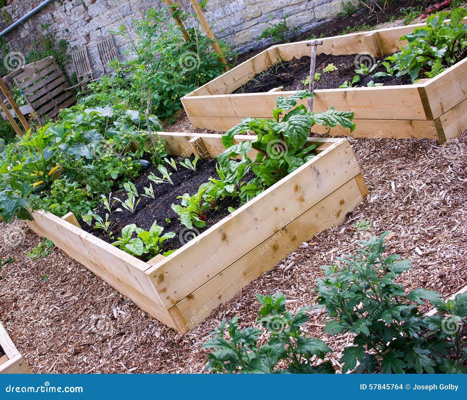 Rustikaler Land Gemuse U Blumen Garten Mit Hochbeeten Stockfoto