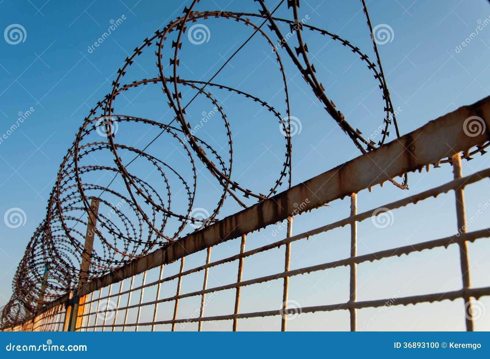 Download Rusty Barb Wire fotografia stock. Immagine di shackle - 36893100