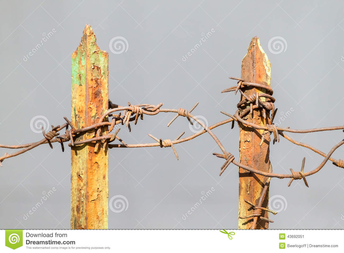 Great Rusted Barbed Wire Photos - Wiring Schematics and Diagrams ...