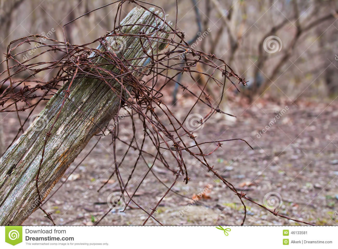 Rusty Barbed Wire On Rustic Fence Post