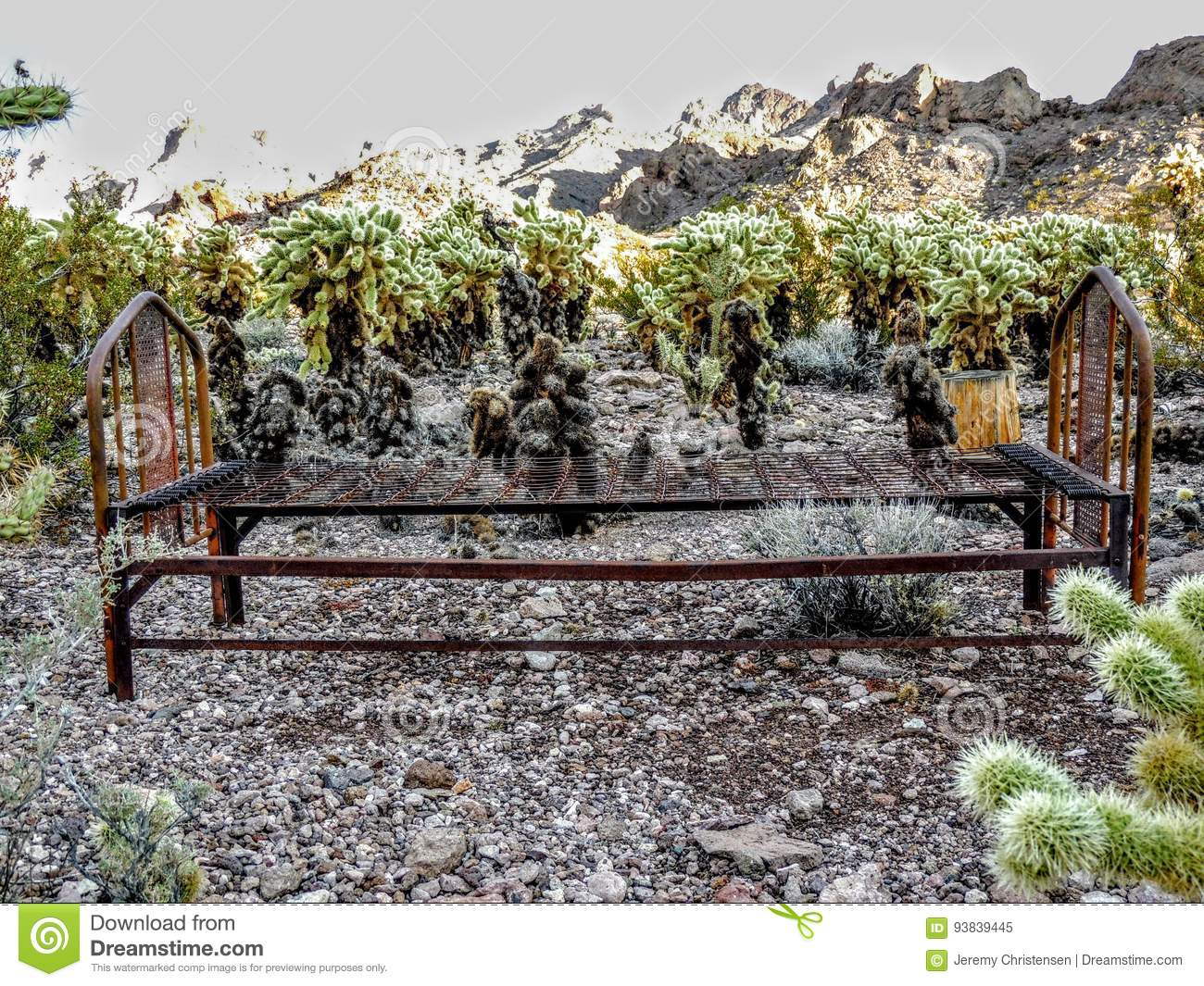 Rusty Bed Frame Surrounded By Jumping Cactus And Arizona Mountain ...