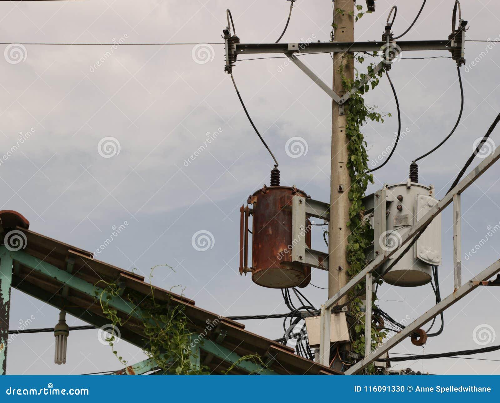 Rusty Distribution Transformer d annata/scatola elettrica su Palo