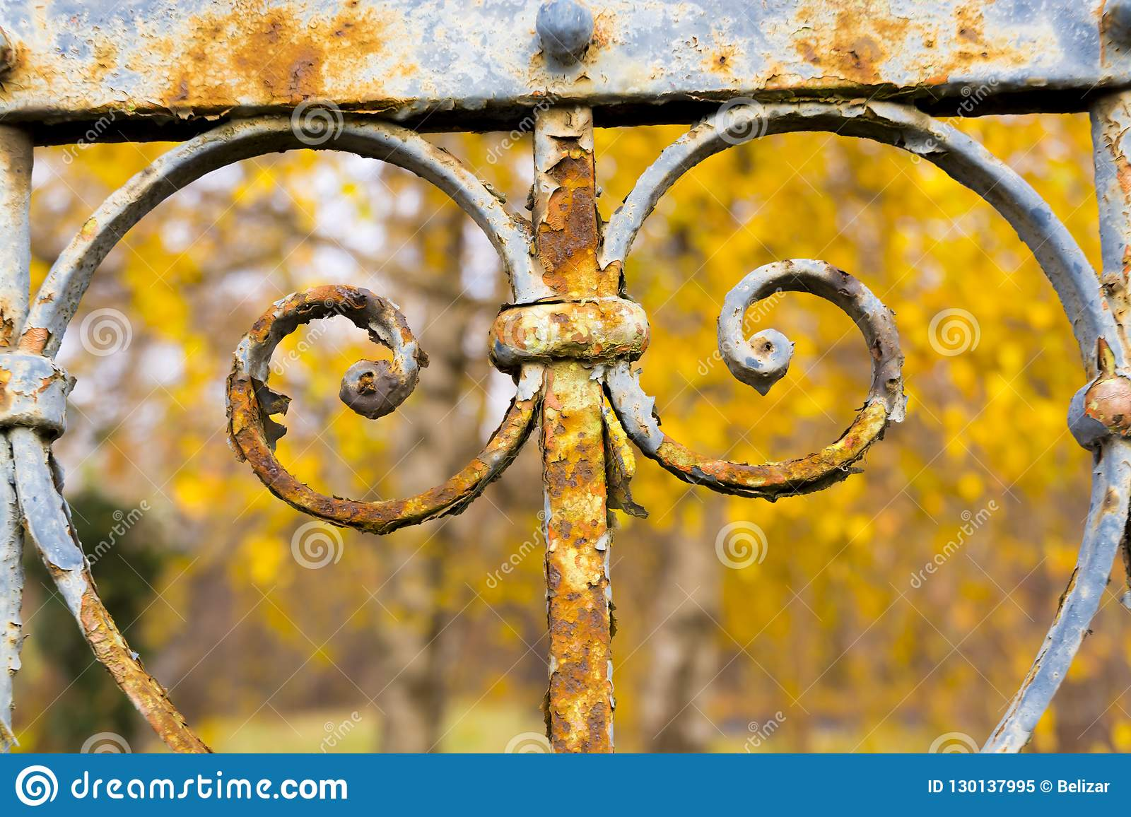 Rusty fence of an old garden