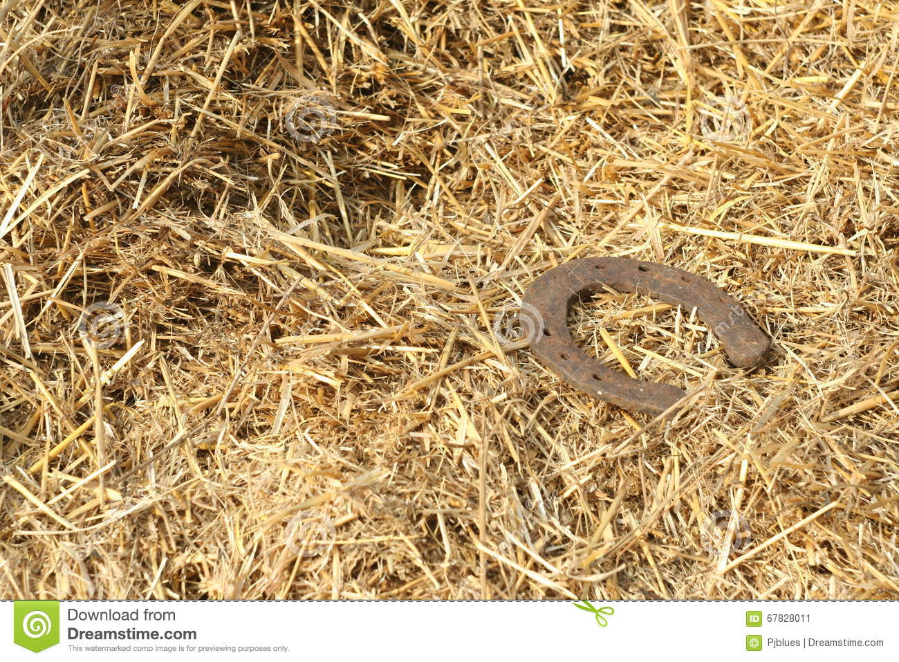 Rusty Horseshoes On A Straw Background