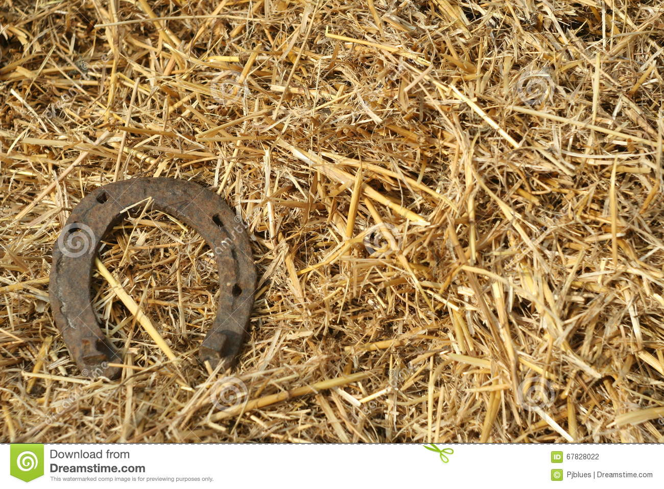 Rusty horseshoes on a straw background rustic scene in a country royalty free stock photo biocorpaavc Choice Image