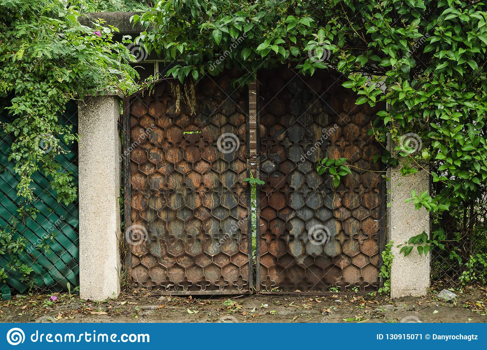 Rusty metal garage surrounded by green grass, brick wall with a wall of green leaves