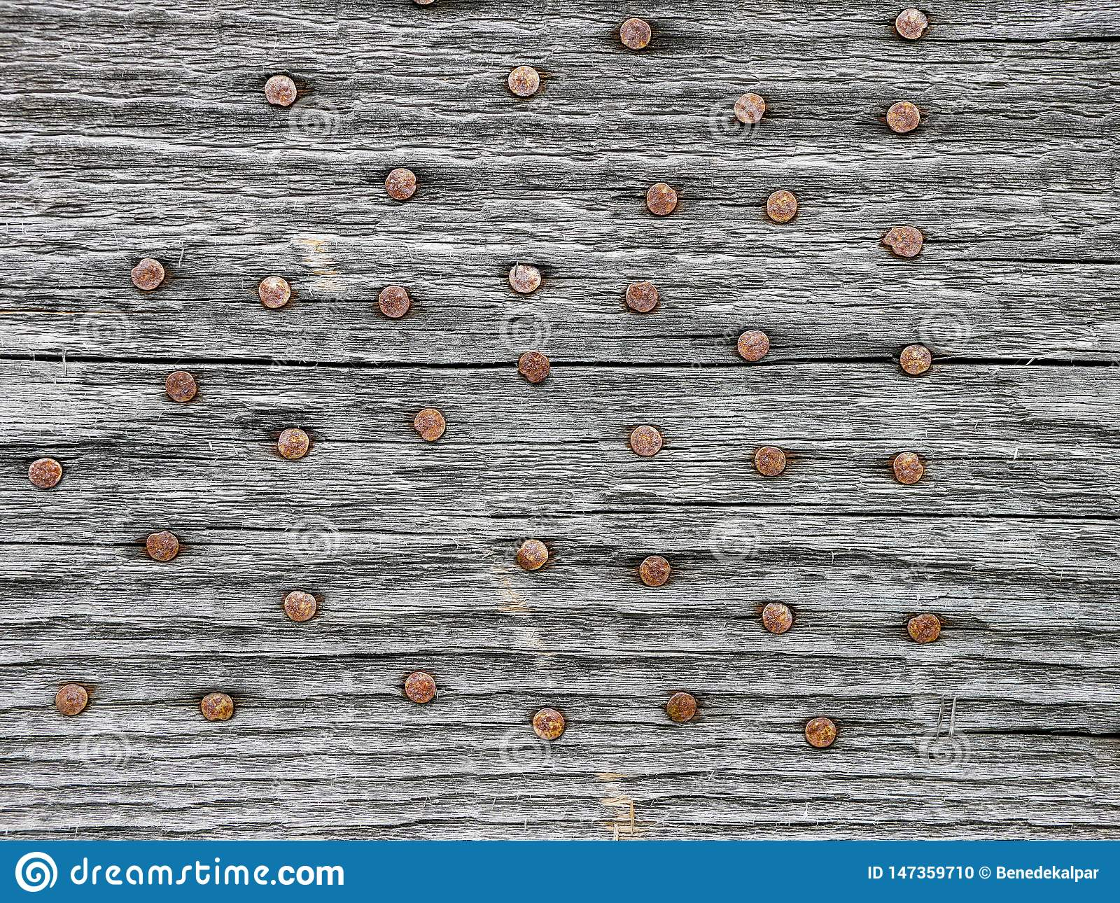 Rusty nails in aged pine wood board close up shot