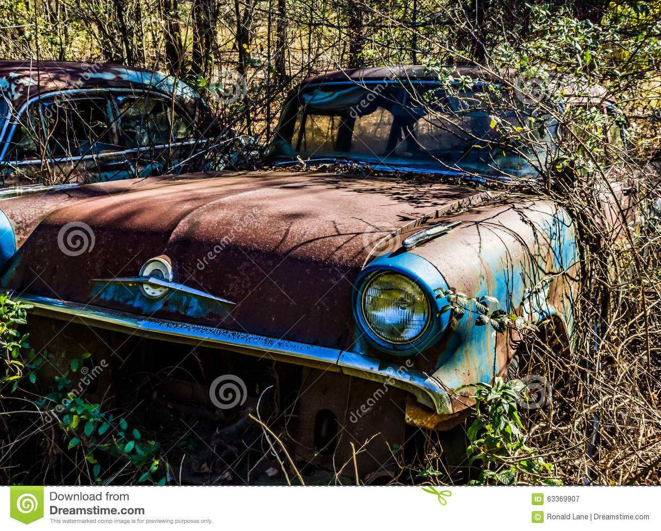 Rusty, Old, Junked Car In The Woods Stock Image - Image of abandoned ...