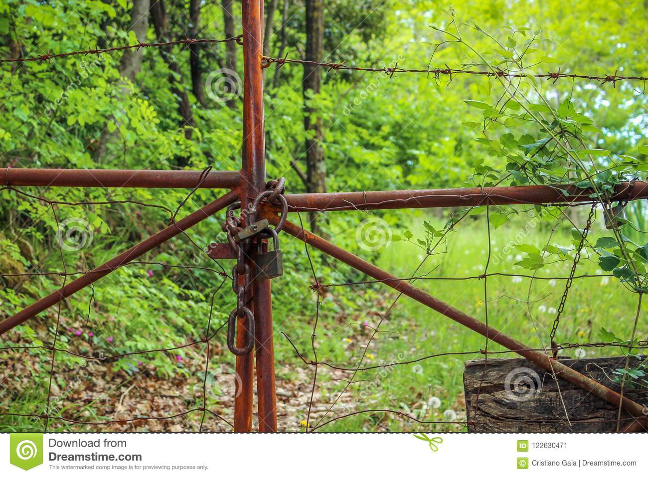 Rusty Old Locked Gate in natura