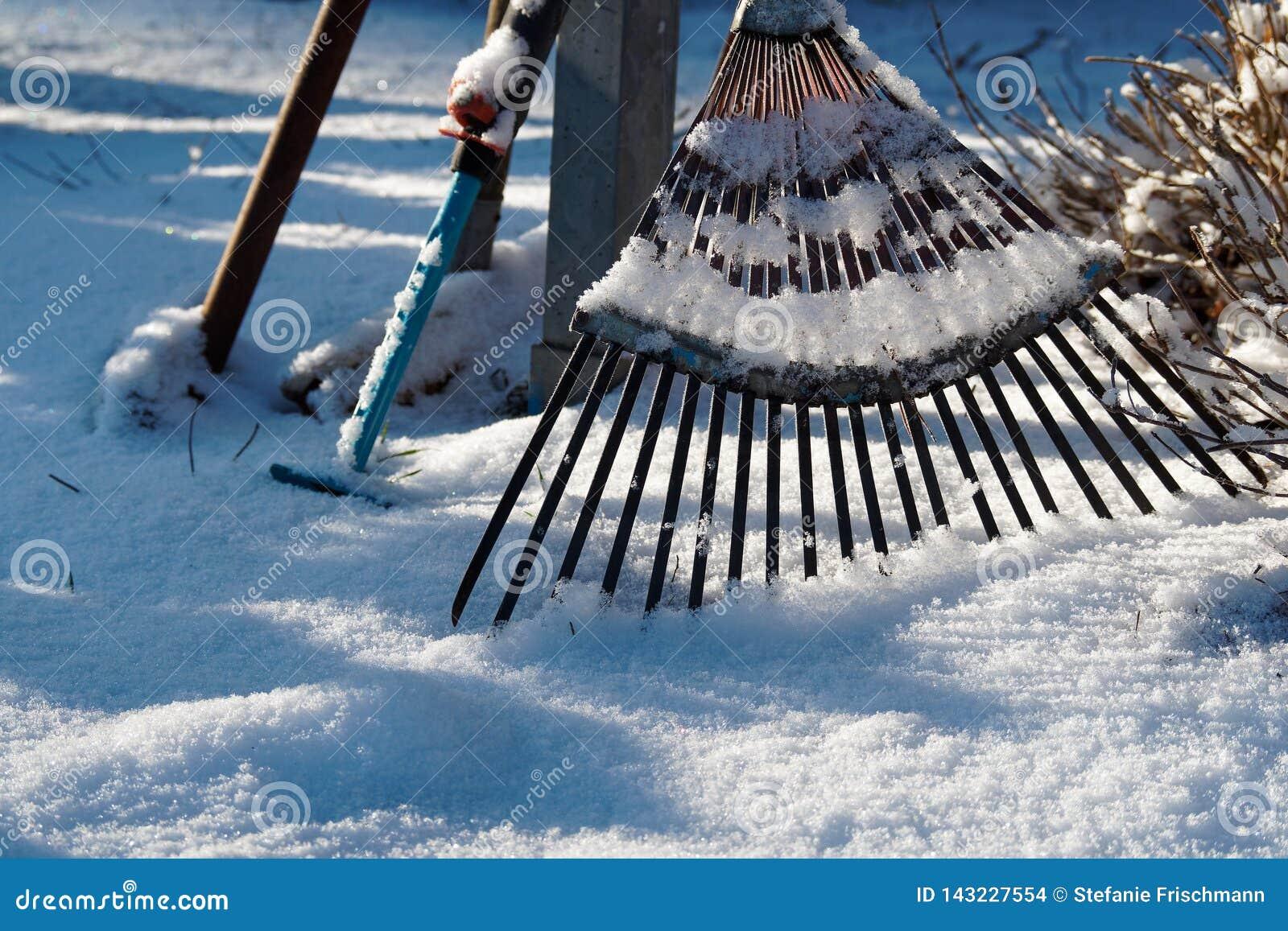 Rusty Rake op Sneeuwgrond