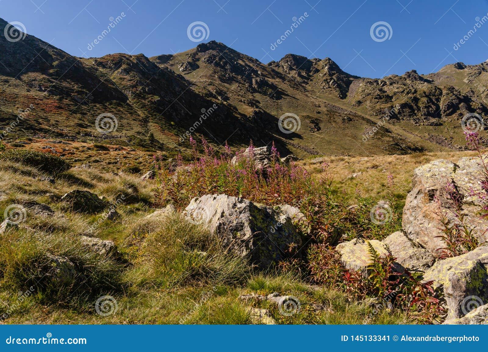 Ruta en el Parc Natural de la Vall de Arteny, los Pirineos, Andorra