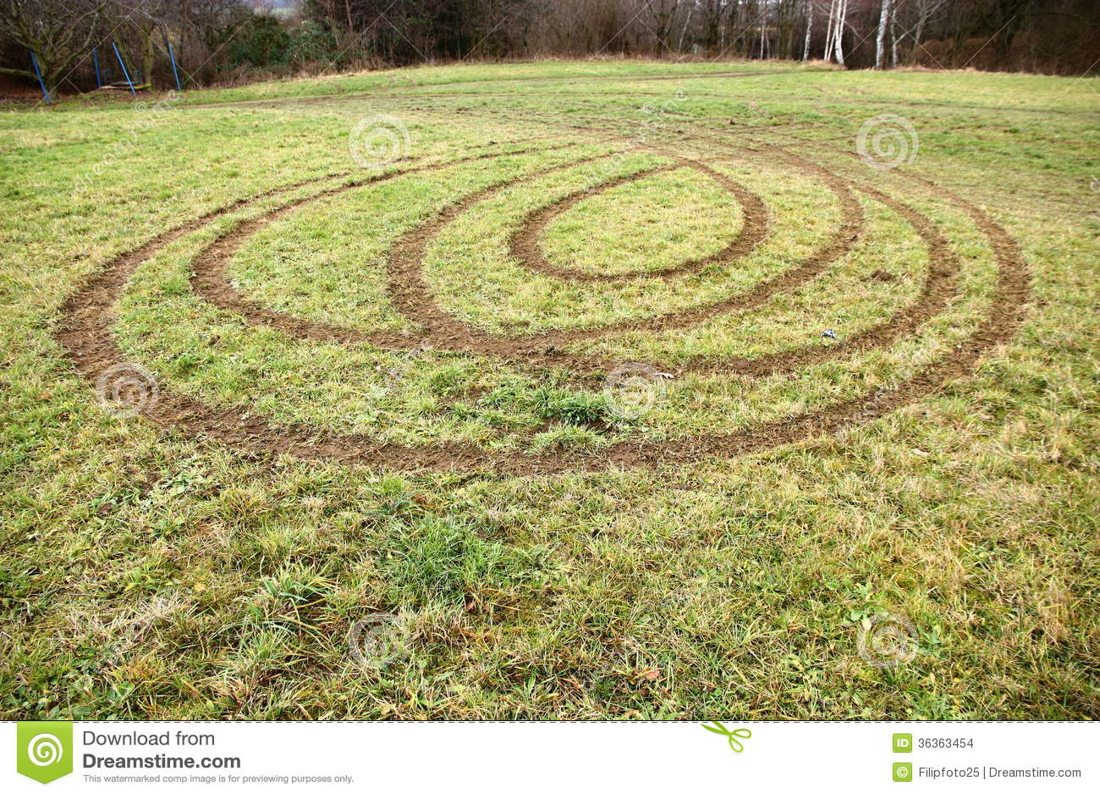 how to make a grass car