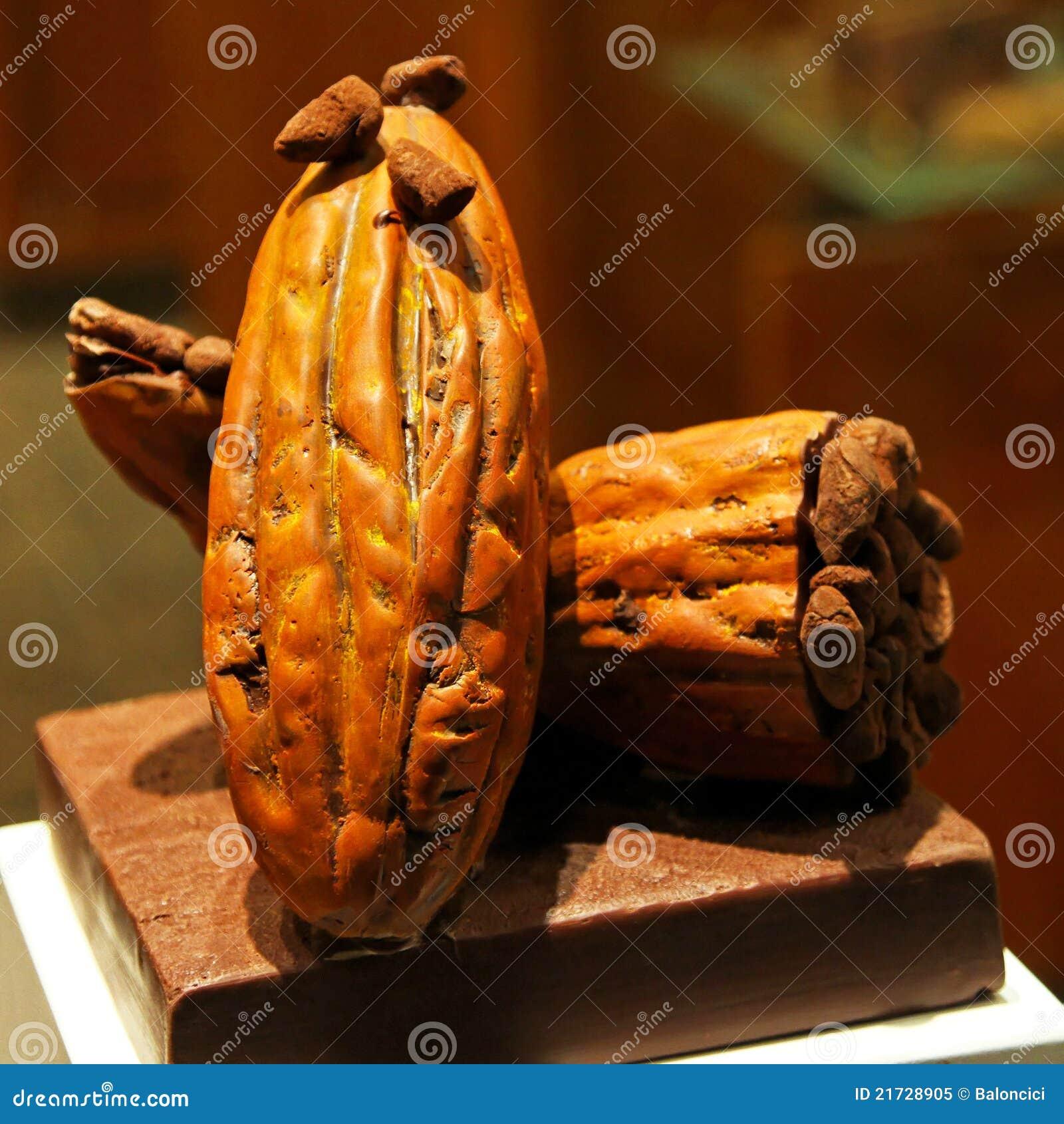 Ruwe de peul van de cacao