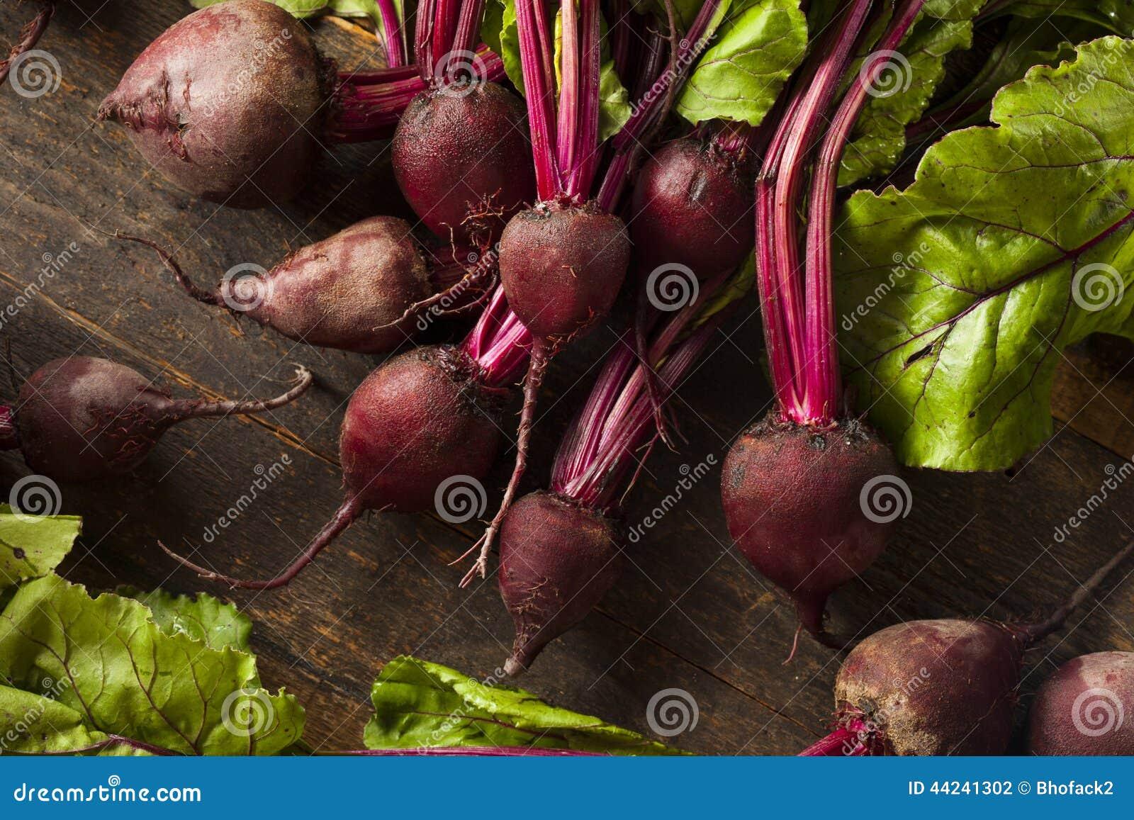 Ruwe Organische Rode bieten