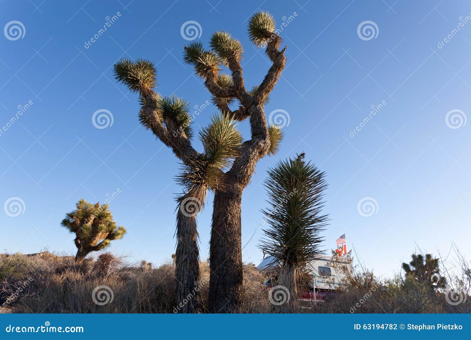 Rv Camping In Joshua Tree National Park California Usa Stock