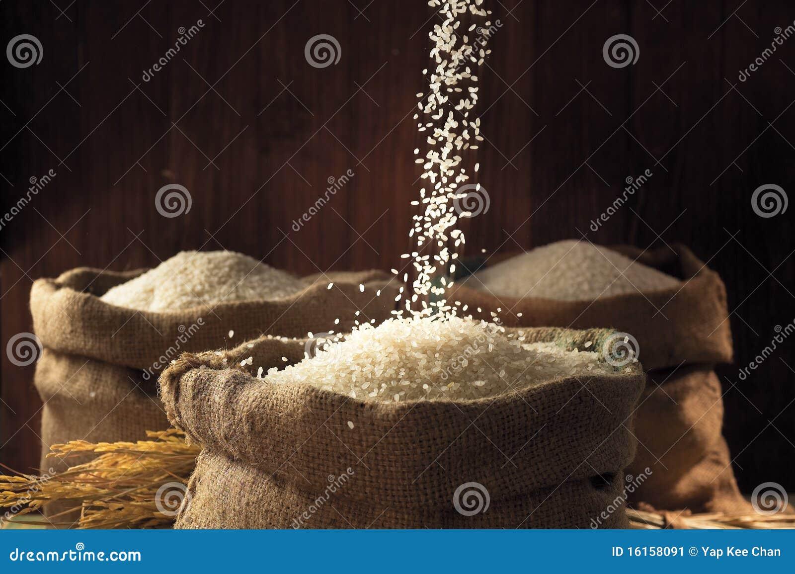 Ryżowy biel