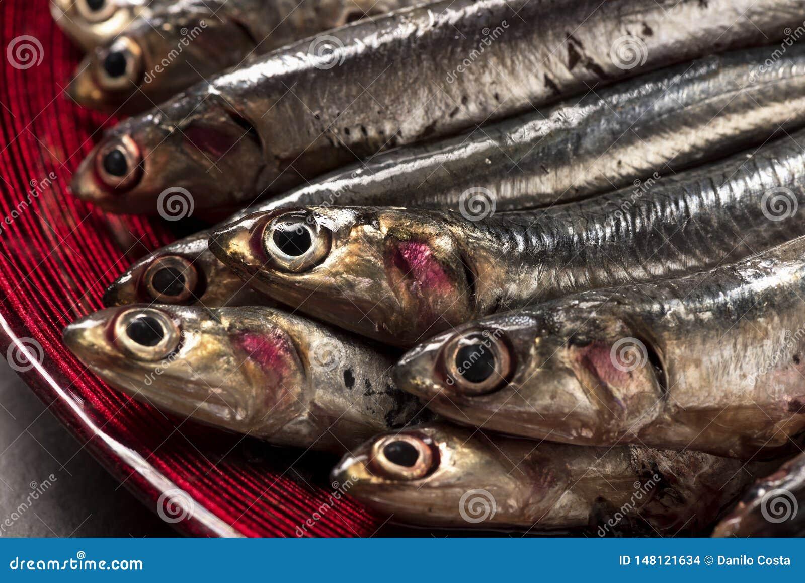 Rybie sardele na drewnianej tnącej desce i talerzu