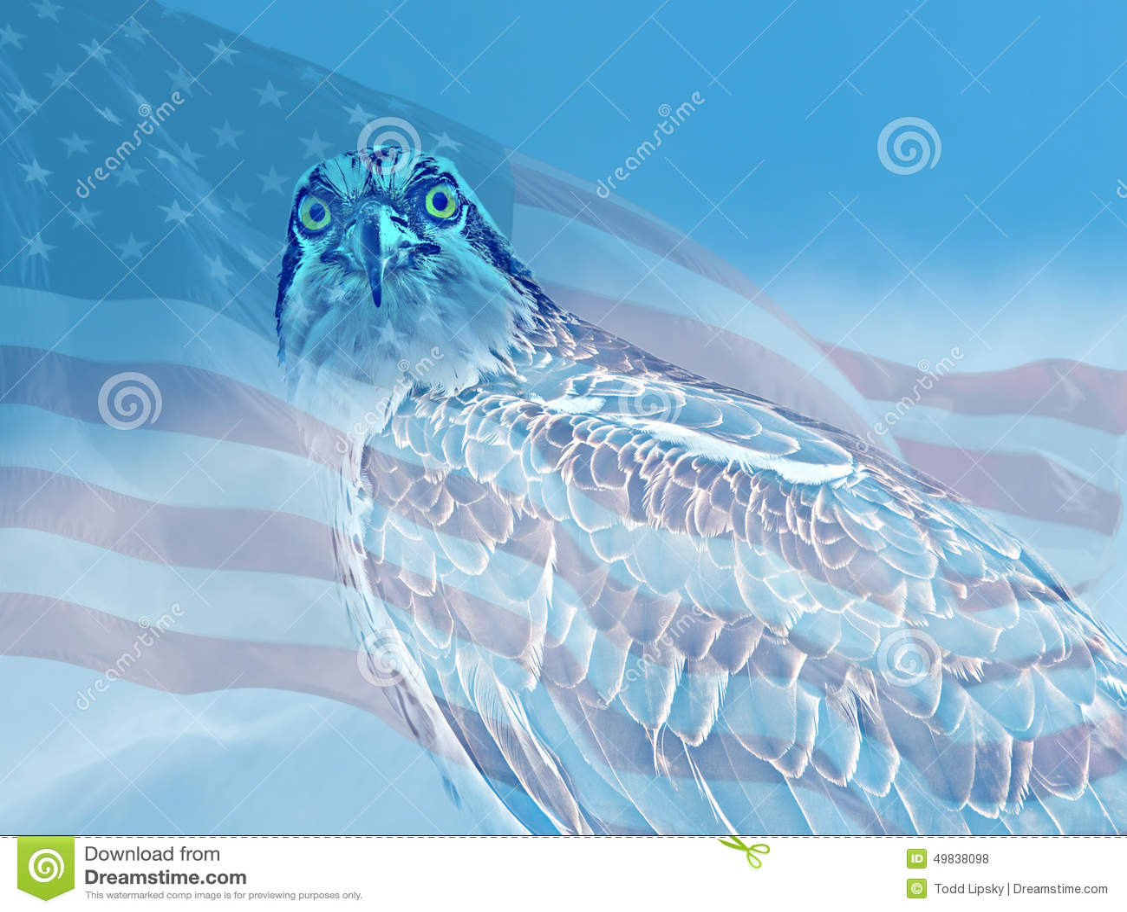Rybołów Gapi się z flaga