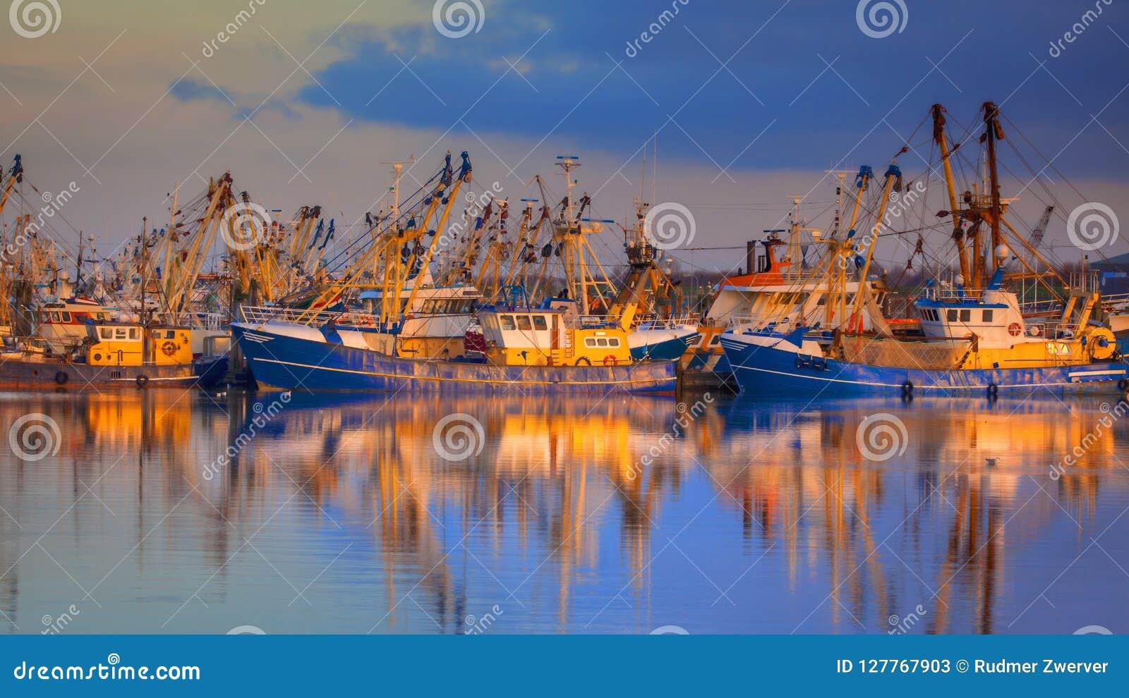 Rybołówstwo w Lauwersoog schronieniu