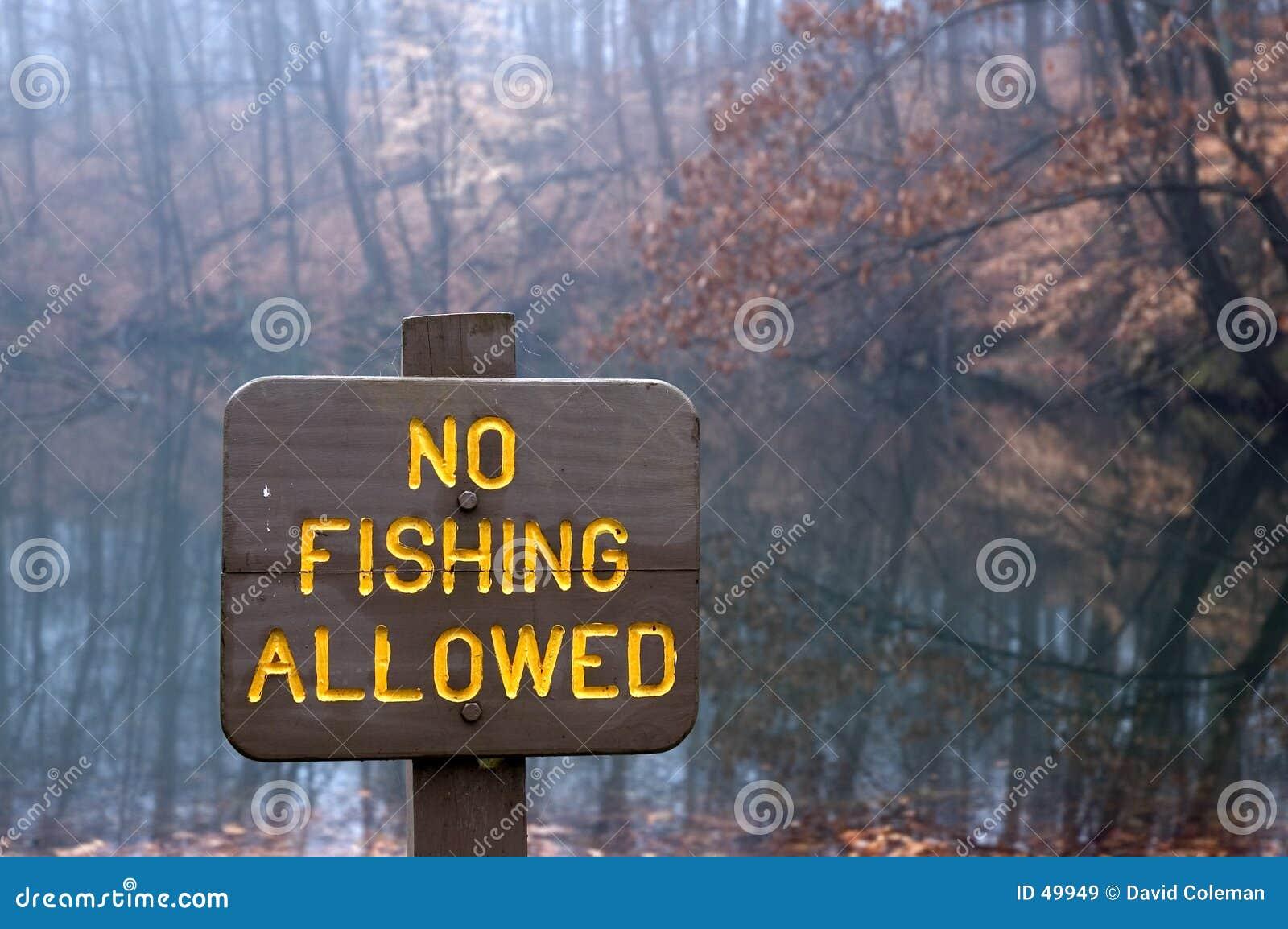 Ryby nie