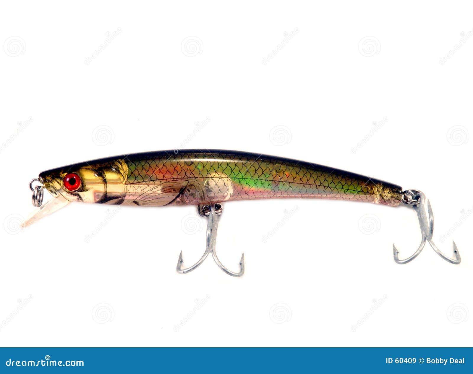 Ryby pokusę