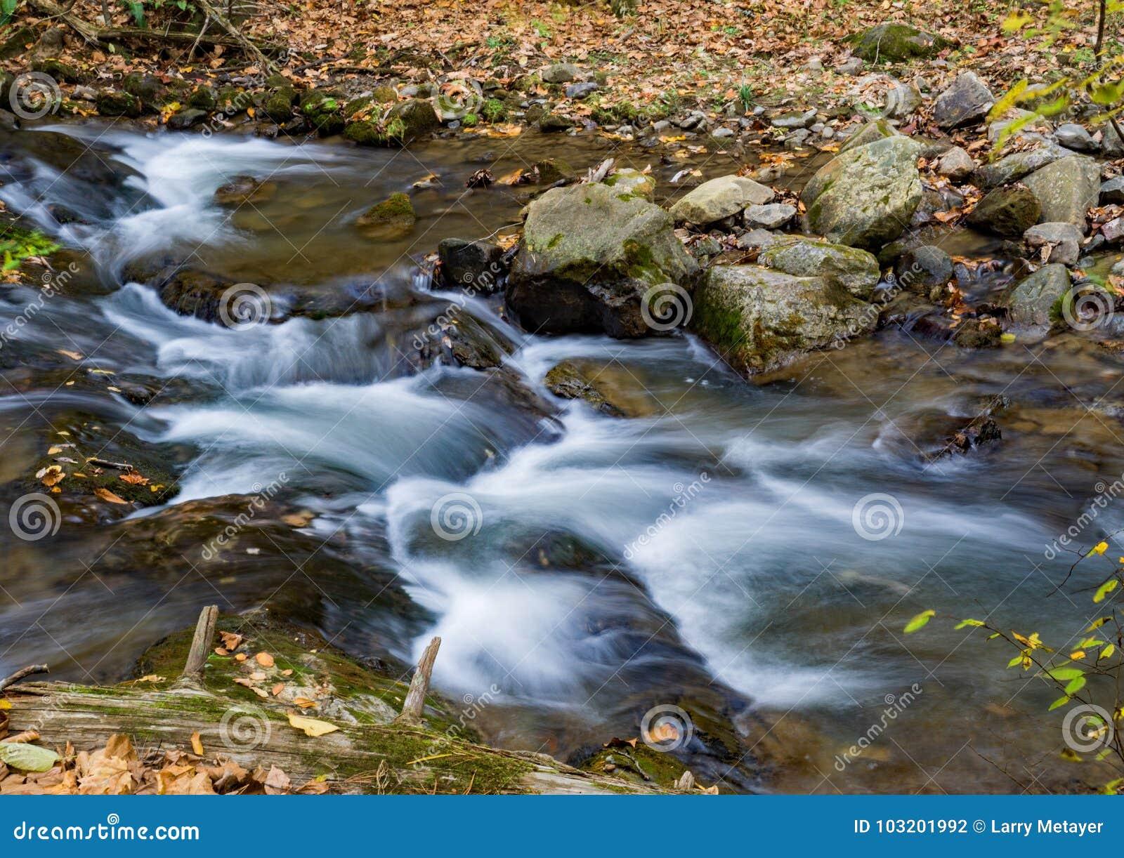 Ryczący Biegającą zatoczkę, Jefferson las państwowy, usa - 4
