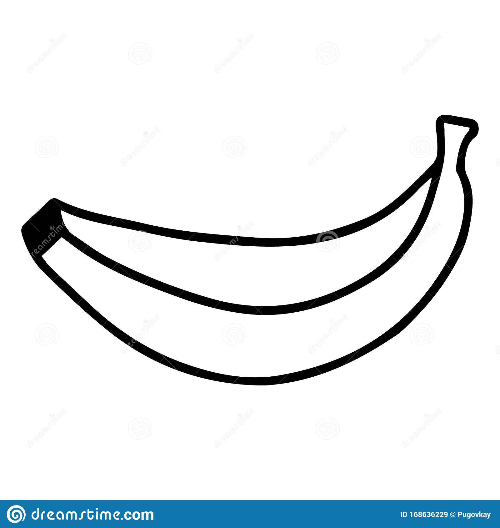 Rysowanie Wektorowe Bananow Doodle Rysowanie Reczne Jeden Banan Wyizolowany Na Bialym Tle Owoce Egzotyczne Obraz Czarno Bialy Ilustracja Wektor Ilustracja Zlozonej Z Przeciwutleniacz Botanika 168636229