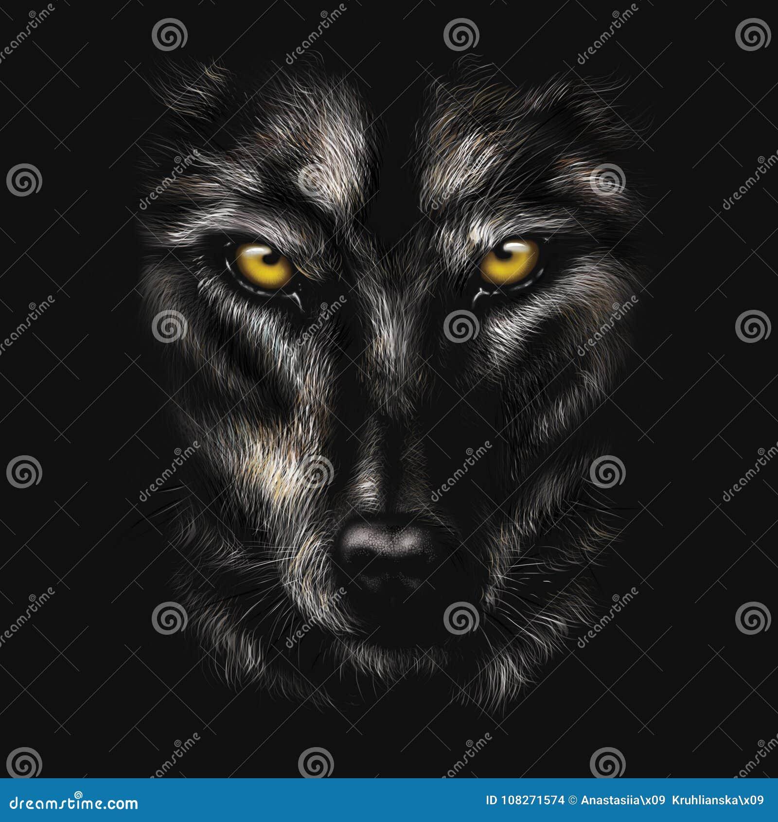 Rysunku Portret Czarny Wilk Ilustracji Ilustracja Złożonej