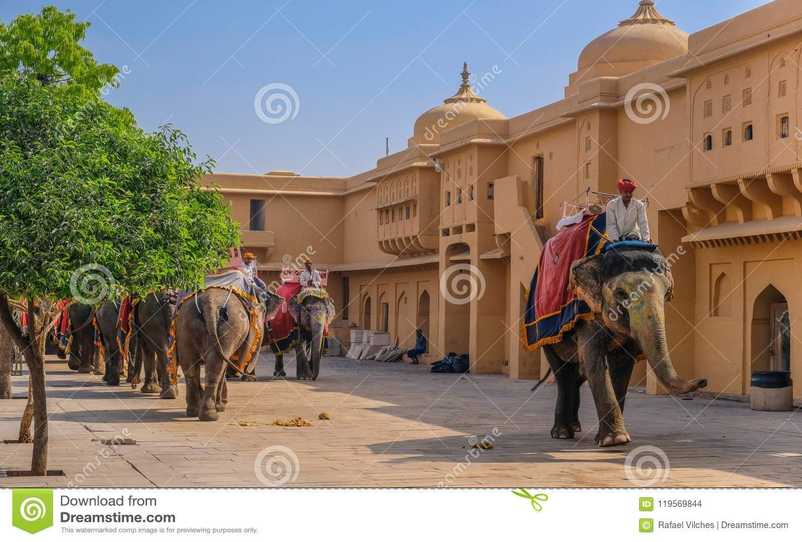 Rząd słonie przy Złocistym fortem