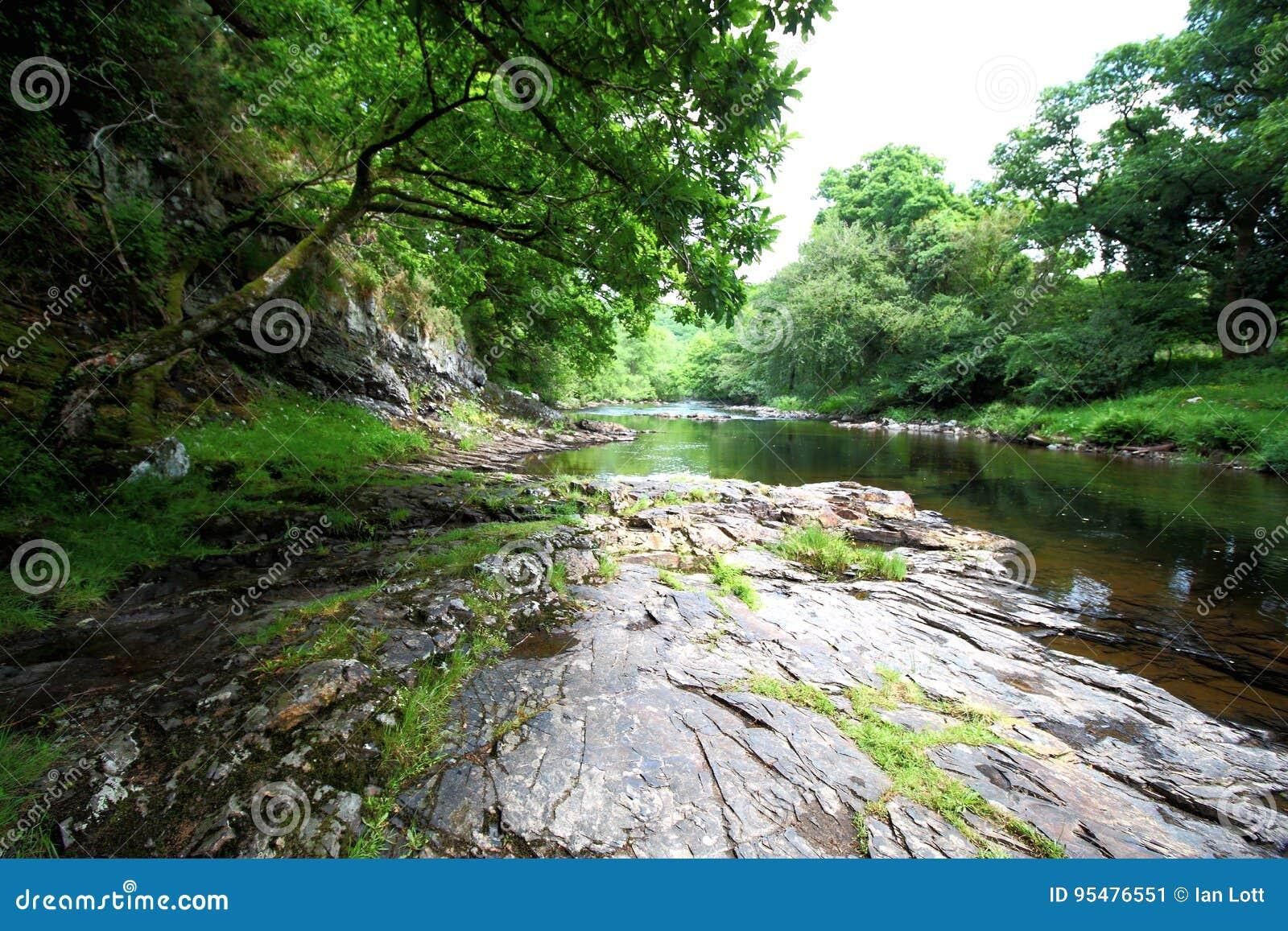 Rzeczna strzałka, Dartmoor park narodowy, Devon, UK