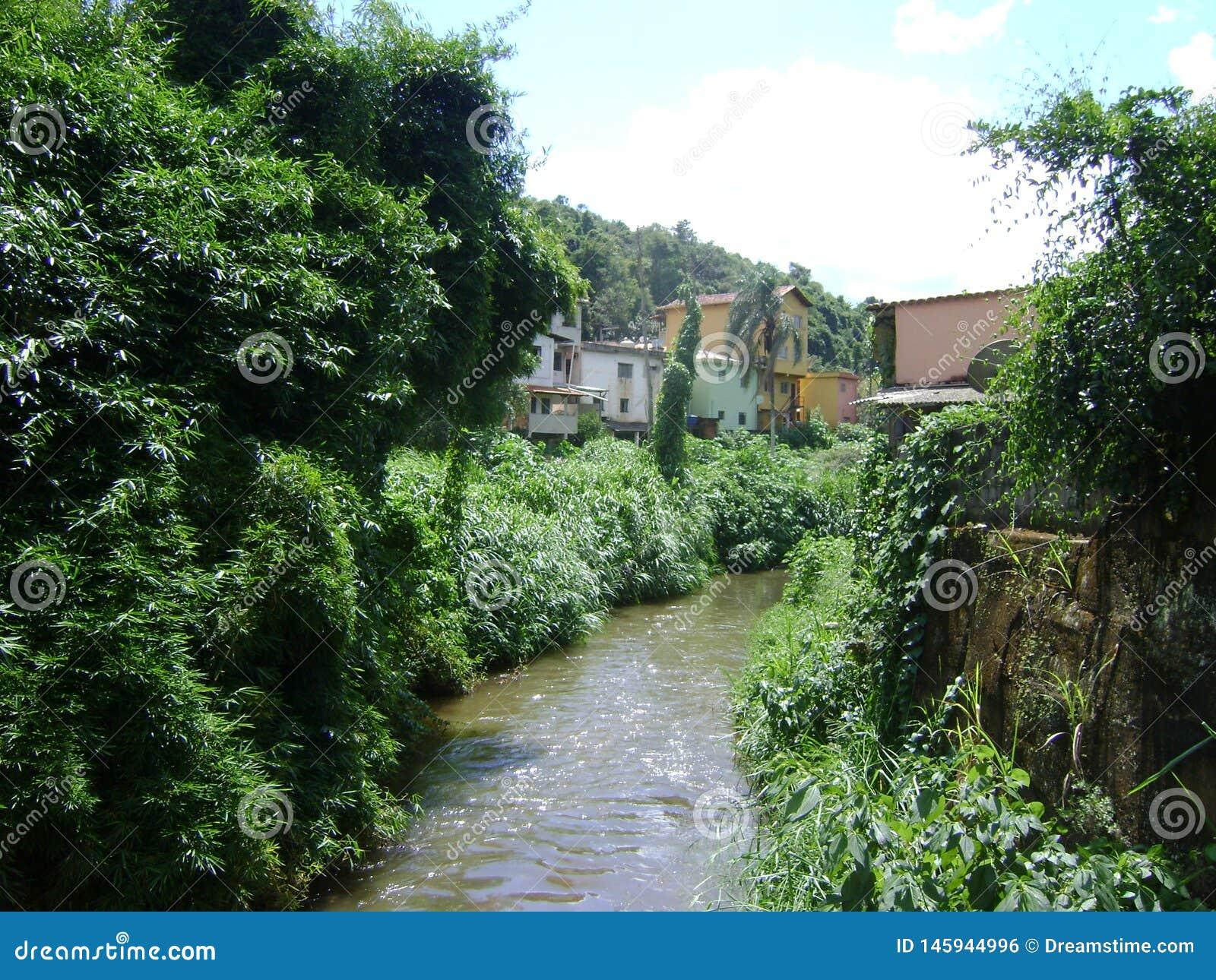 Rzeczny São João w barão De Cocais z zanieczyszczonej wody i bambusa plantacją na stronach,