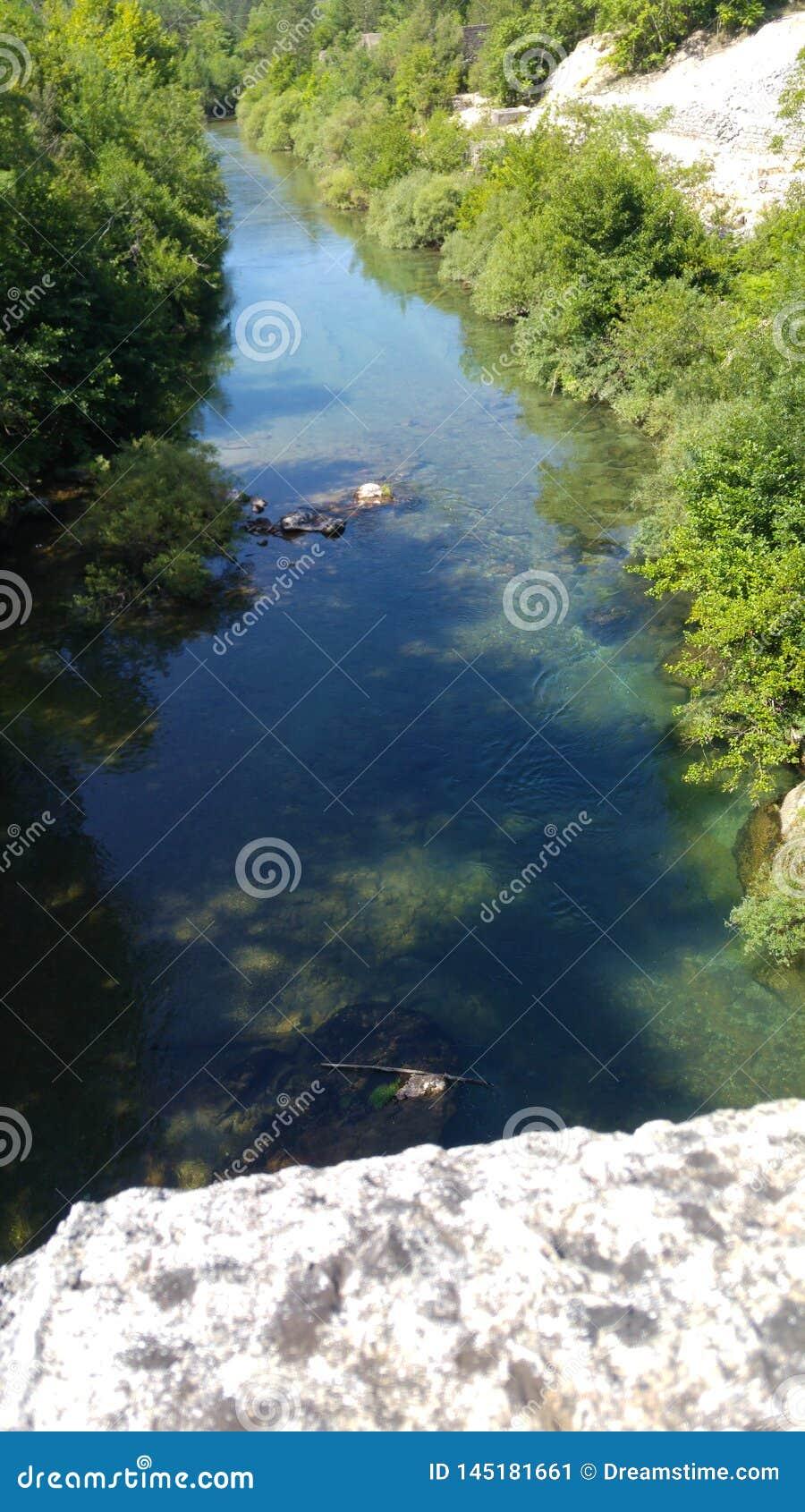 Rzeka po ?rodku lasu