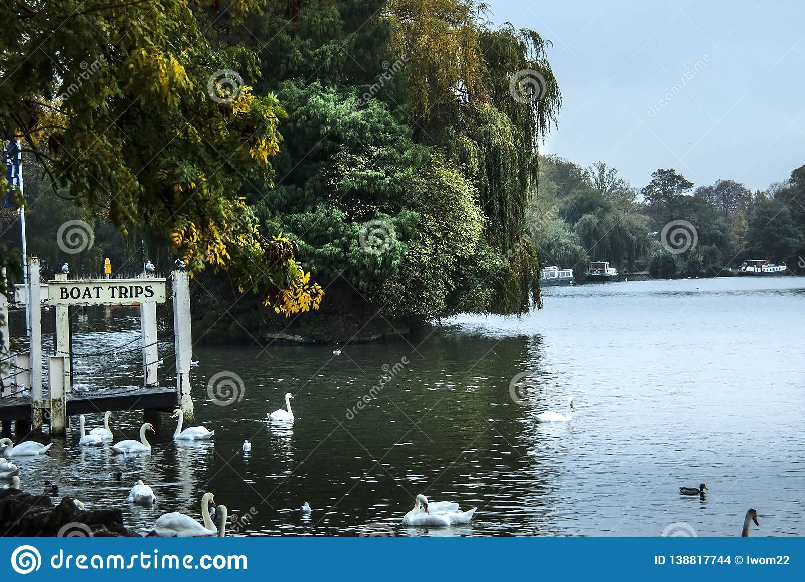 Rzeka Tamiza Windsor, Berkshire, Anglia, UK