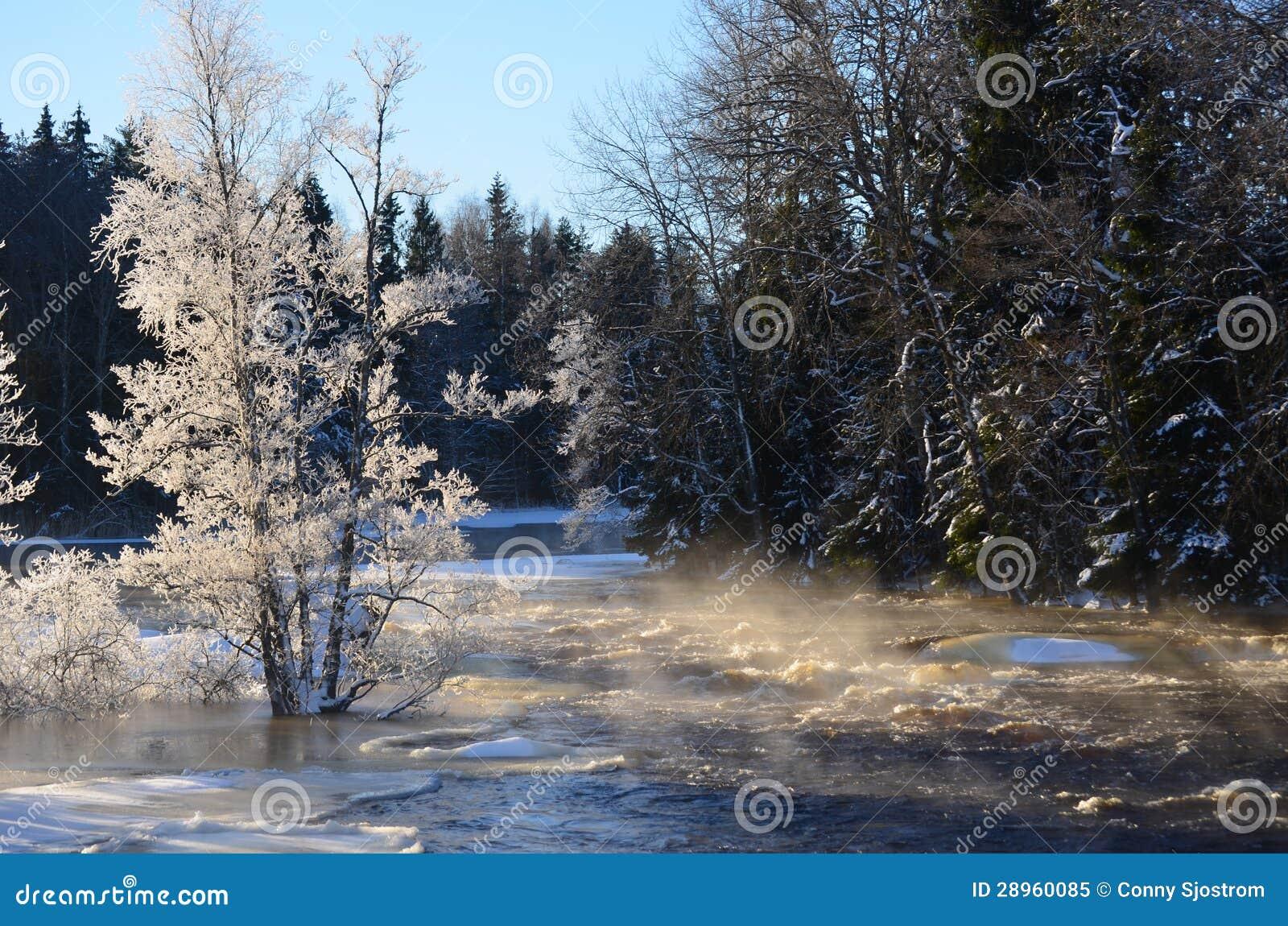 Rzeka w zimie