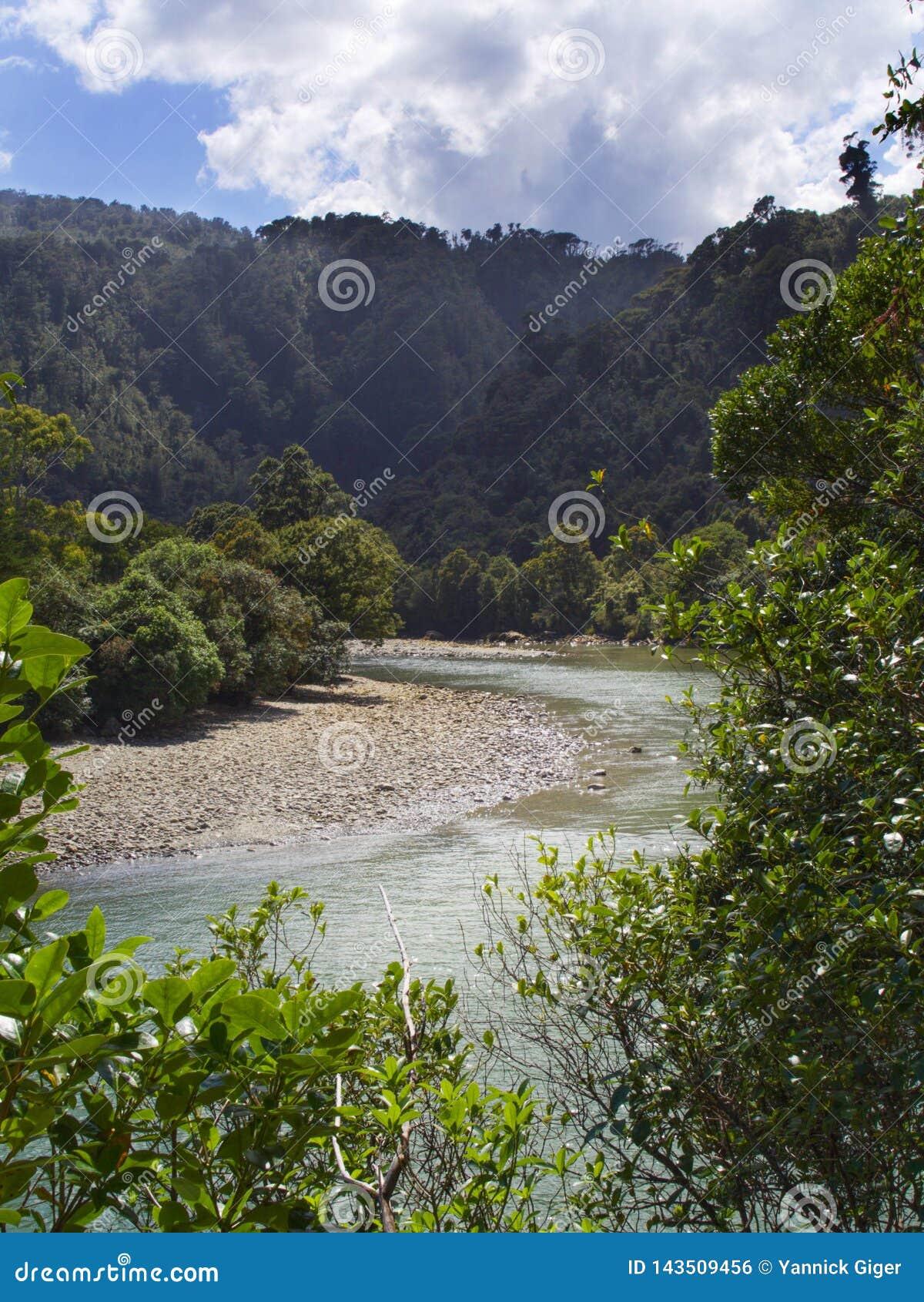 Rzeka zgina i wygina się przez zalesionego pustkowia w Nowa Zelandia