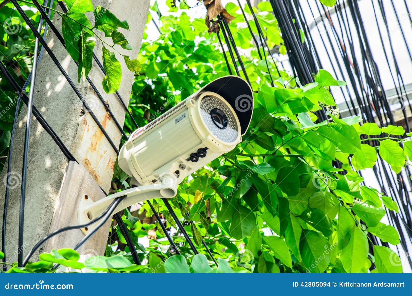 Säkerhet för kameracopyspace alldeles