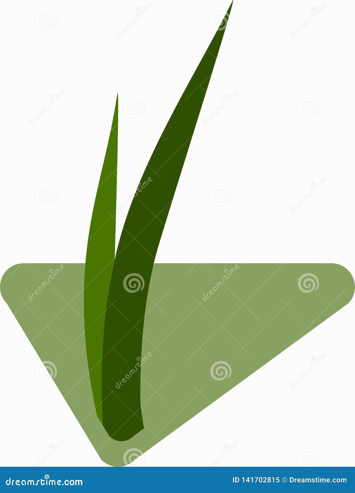 Sämlinge des Grases für das Züchten im abstrakten Vektor Ikone für die Landwirtschaft auf dem Hintergrund der grünen Raute