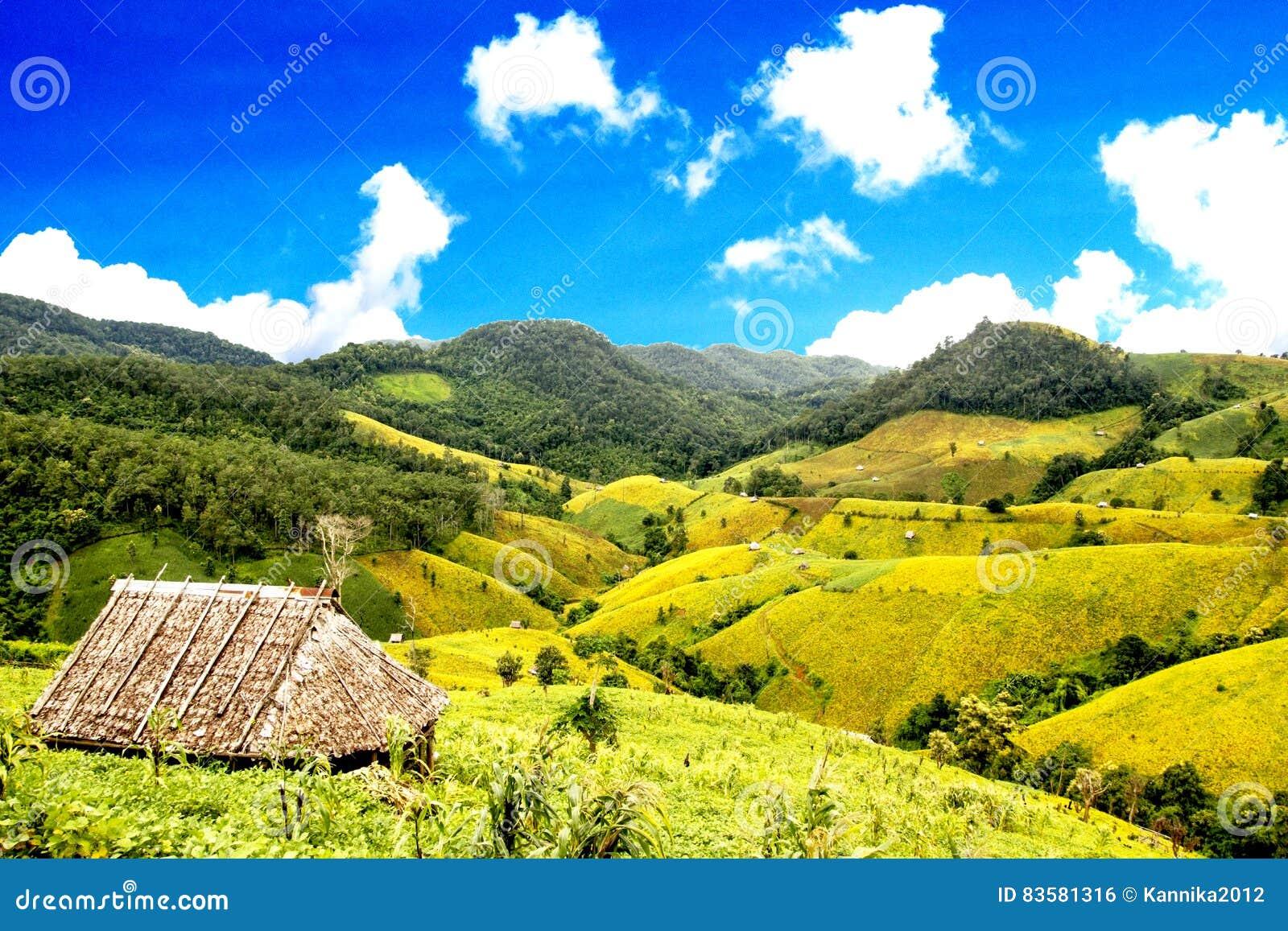 Sätter in sojabönabönan på berg