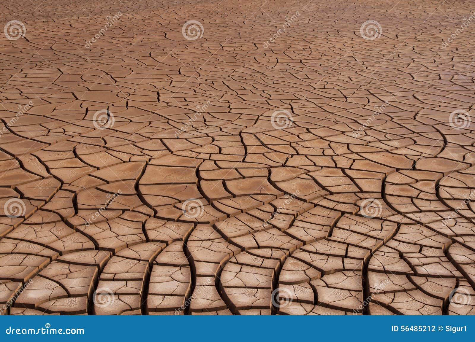 Sécheresse criquée de sol
