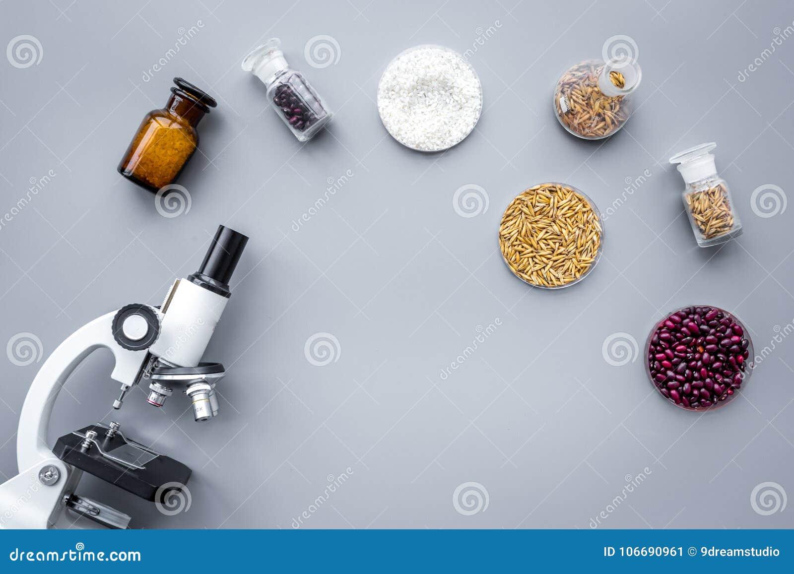Sécurité alimentaire Blé, riz et haricots rouges près de microscope sur le copyspace gris de vue supérieure de fond