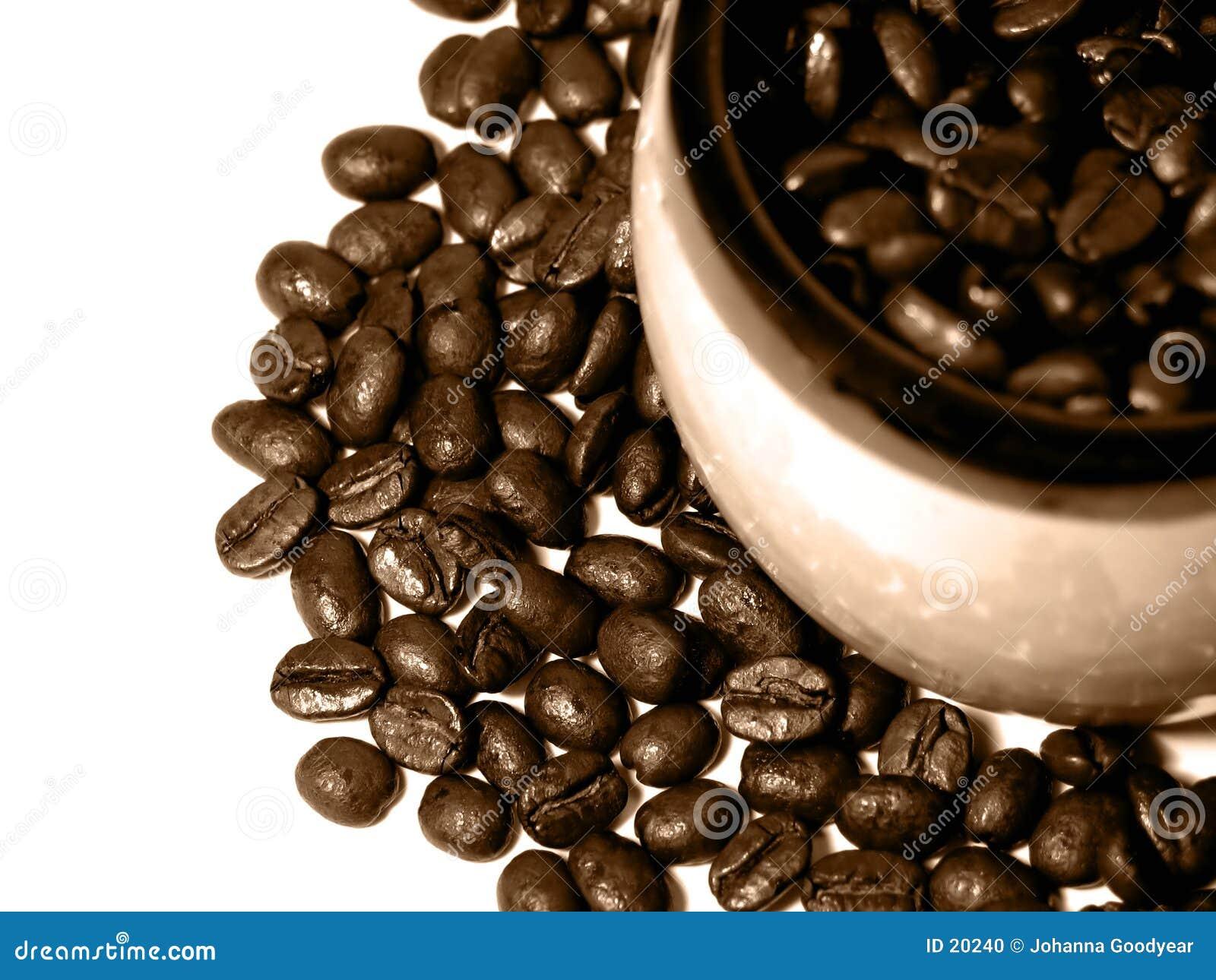 Série 1 de café