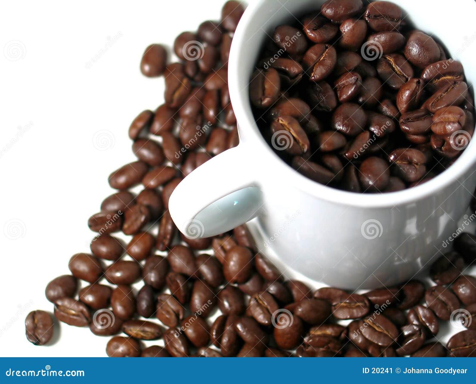 Série 2 de café