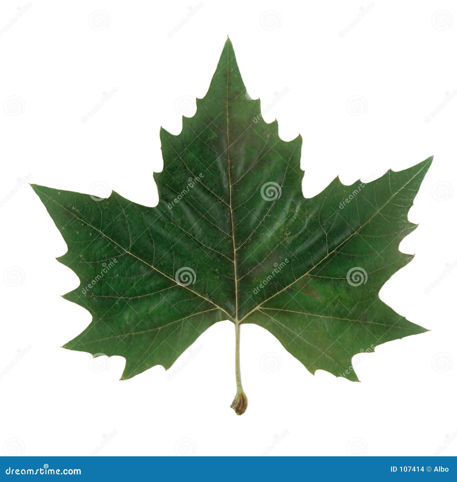 Símbolo de Canadá