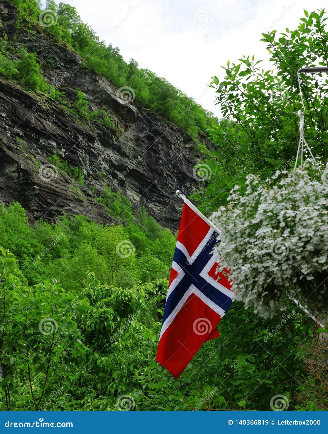 Símbolo de Noruega Bandera noruega en el fondo de la naturaleza