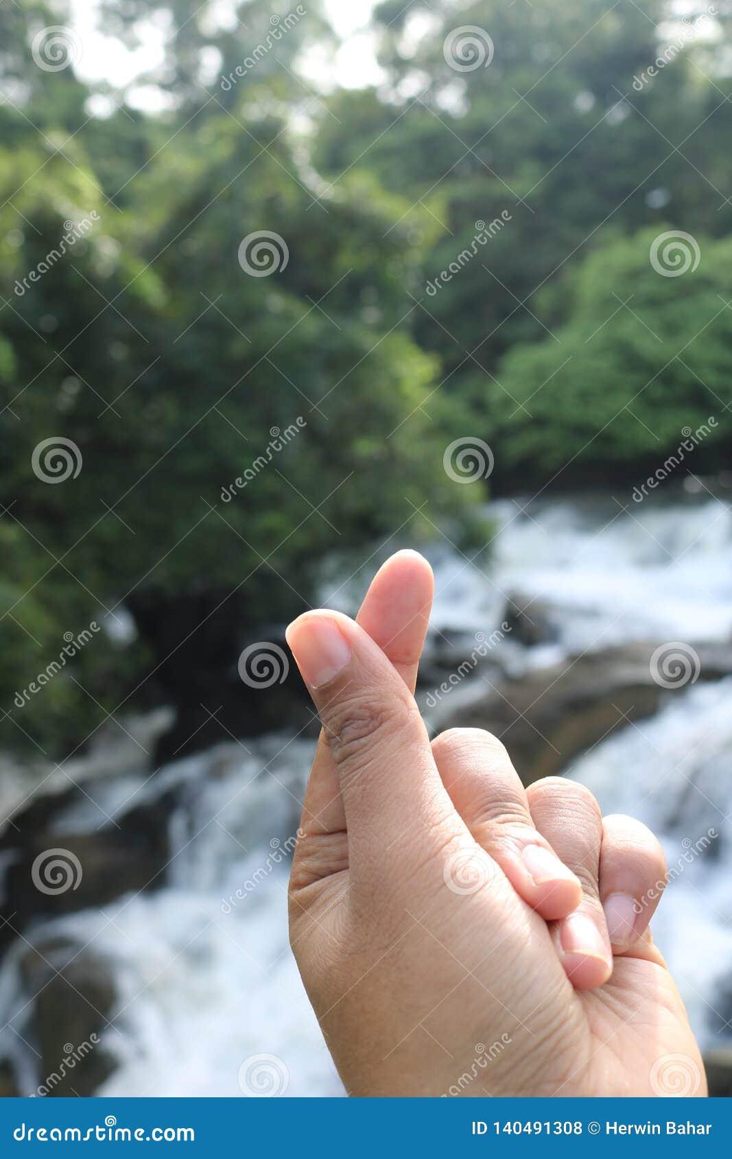 Símbolo del amor con los fingeres