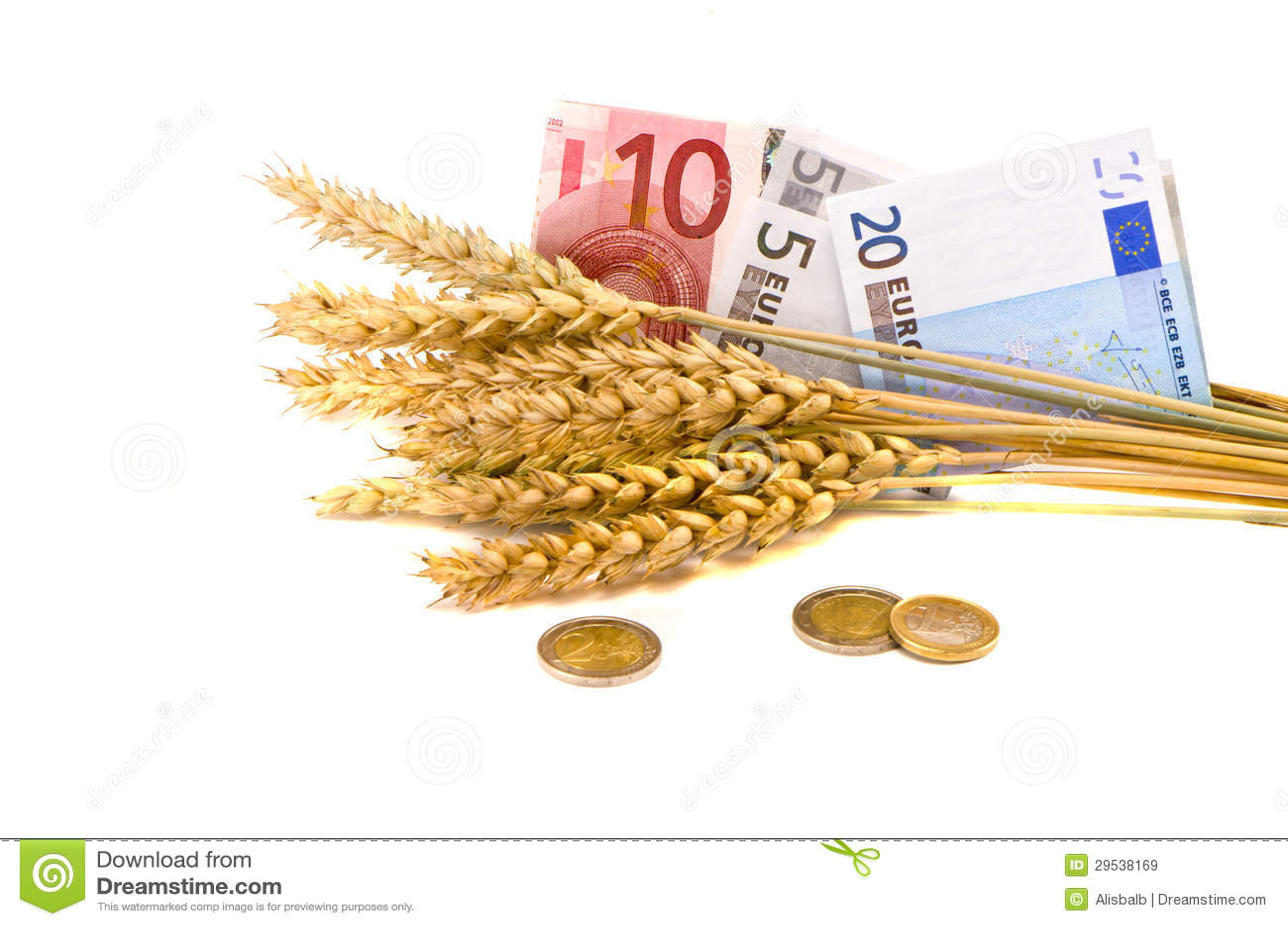 Símbolo do negócio da agricultura - orelhas e euro do trigo